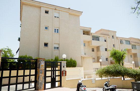 Calle,  CARDO CUCO,  0,  29018,  Málaga